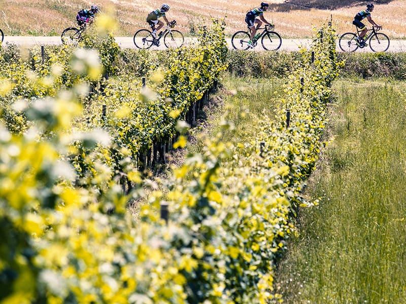 Pacchetto 3 notti + 3 bike tours sul Conero