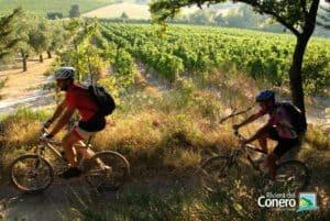 percorso MTB Terre del Rosso Conero - Conero by Bike
